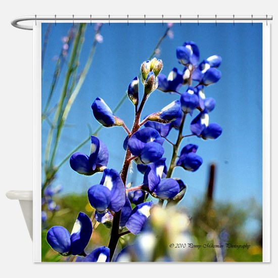 Texas Bluebonnet by Penny Mikeman