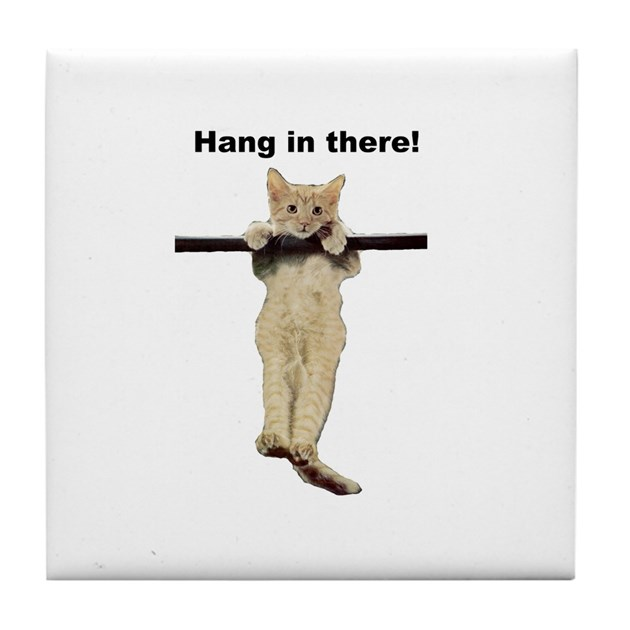 Hang In There Baby Cute Kitty Cat Kitten On Branch By