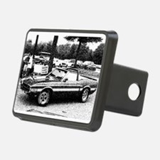 69 Shelby GT Hitch Cover