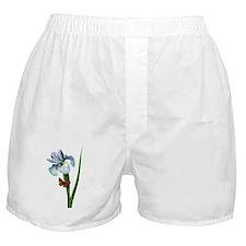 Pierre-Joseph Redoute Botanical Boxer Shorts