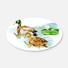Mallard Ducks Oval Car Magnet