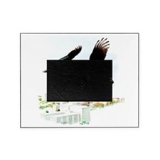 Turkey Vulture Picture Frame