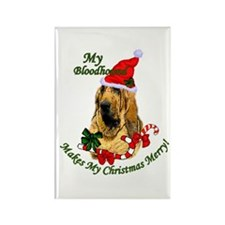 Bloodhound Christmas Rectangle Magnet (10 pack)