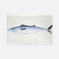 King Mackerel fish Rectangle Magnet