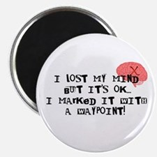 Lost My Mind... Magnet
