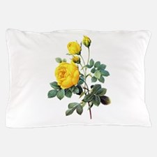 Pierre-Joseph Redoute Rose Pillow Case