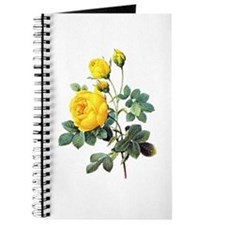 Pierre-Joseph Redoute Rose Journal