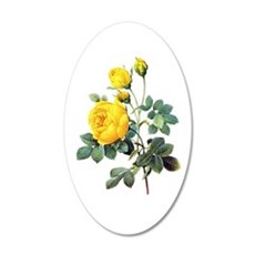 Pierre-Joseph Redoute Rose Wall Decal