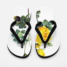 Pierre-Joseph Redoute Rose Flip Flops