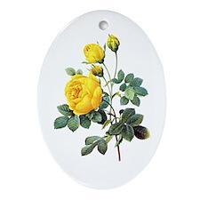 Pierre-Joseph Redoute Rose Ornament (Oval)