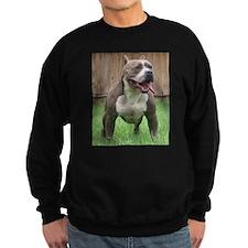 Pittbull Sweatshirt