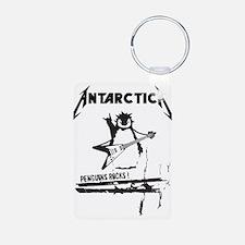 Antarctica Keychains