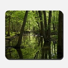 Wooded Reflections Mousepad