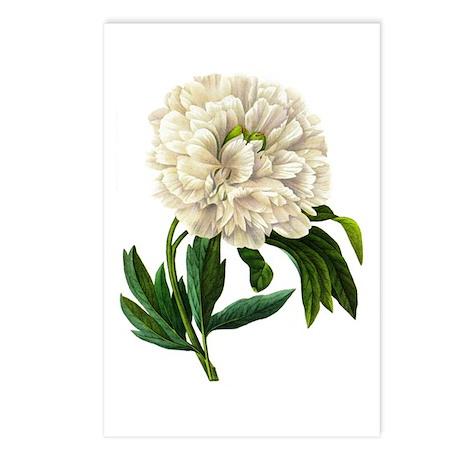 Pierre-Joseph Redoute Botanical Postcards (Package