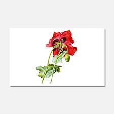 Pierre-Joseph Redoute Botanical Car Magnet 20 x 12