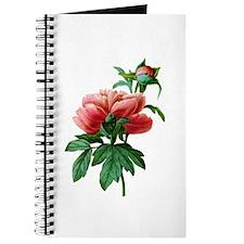Pierre-Joseph Redoute Botanical Journal