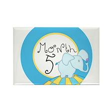 Dr Seuss Inspired 5 Months Unisex Baby Milestone R