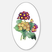 Pierre-Joseph Redoute Botanical Sticker (Oval)