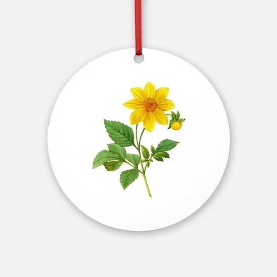 Pierre-Joseph Redoute Botanical Ornament (Round)