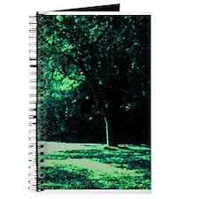 Night Shadows Journal