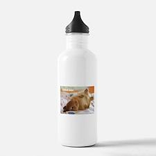 Cute bunny fell over Sports Water Bottle
