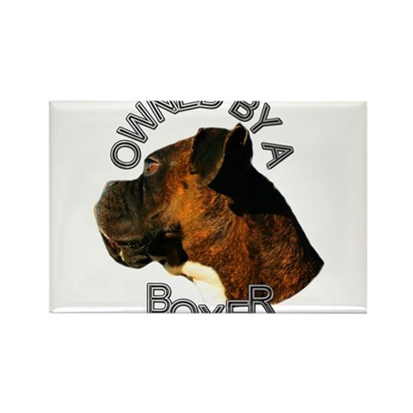 Owned by a Boxer Dog Rectangle Magnet (100 pack)