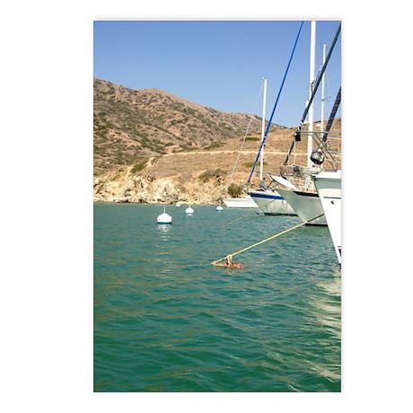 Sailboats at Catalina Harbor Postcards (Package of
