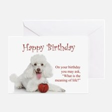 Funny Poodle Birthday Card