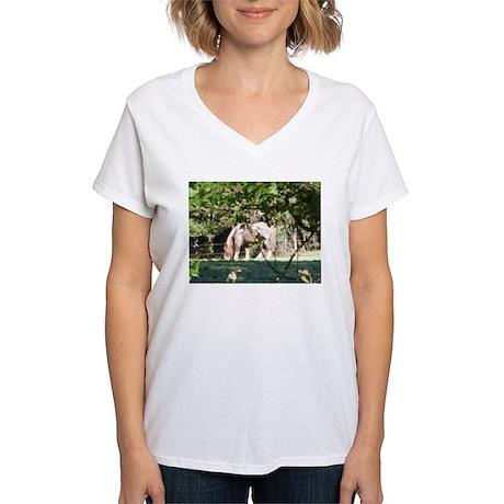 Breton Horse Women's V-Neck T-Shirt