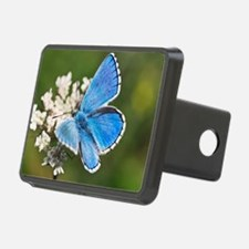 Adonis blue butterfly - Hitch Cover
