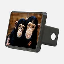 Chimpanzees - Hitch Cover