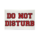 Do Not Disturb Rectangle Magnet (10 pack)