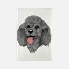 Gray Poodle Rectangle Magnet