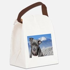 Blue American Pit Bull Terrier Puppy Dog Canvas Lu