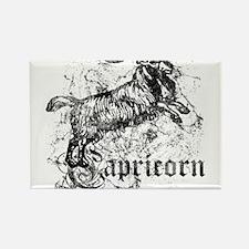 Worn Zodiac Capricorn Rectangle Magnet