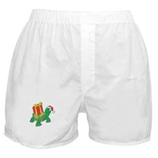 Christmas Turtle Boxer Shorts