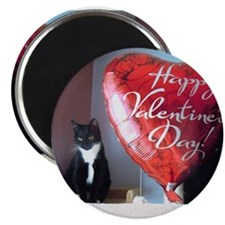 """Valentine's Day Kitty 2.25"""" Magnet (10 pack)"""