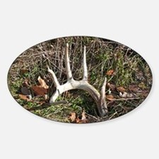 Big shed antlers Rectangle Decal