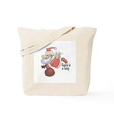 Santa is a Fairy Tote Bag