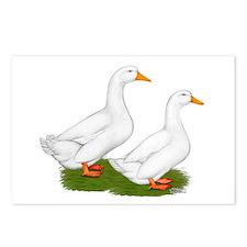 White Pekin Ducks 2 Postcards (Package of 8)