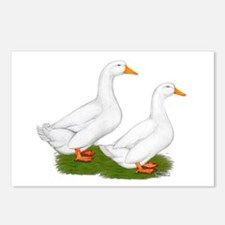 White Pekin Ducks 2 Postcards (Package of 8)