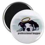 PROFESSIONAL BEGGER Magnet