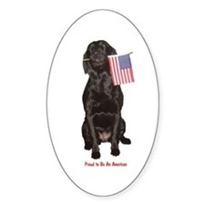 proud american Oval Decal