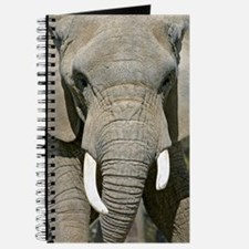 Elephant Face Journal