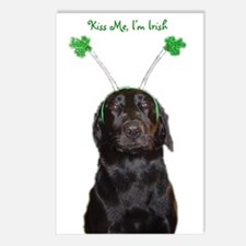 Irish lab Postcards (Package of 8)