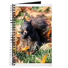 Squirrel Eating Journal