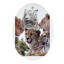 big cats Oval Ornament