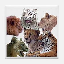 big cats Tile Coaster
