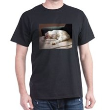 Rise And Shine? Nope. T-Shirt