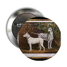 Antique Dalmatian Button